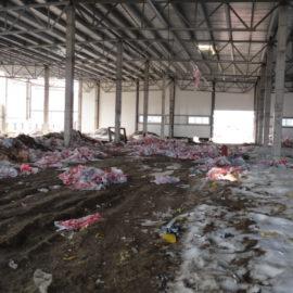 Оптимизация работы складского хозяйства при строительстве объектов